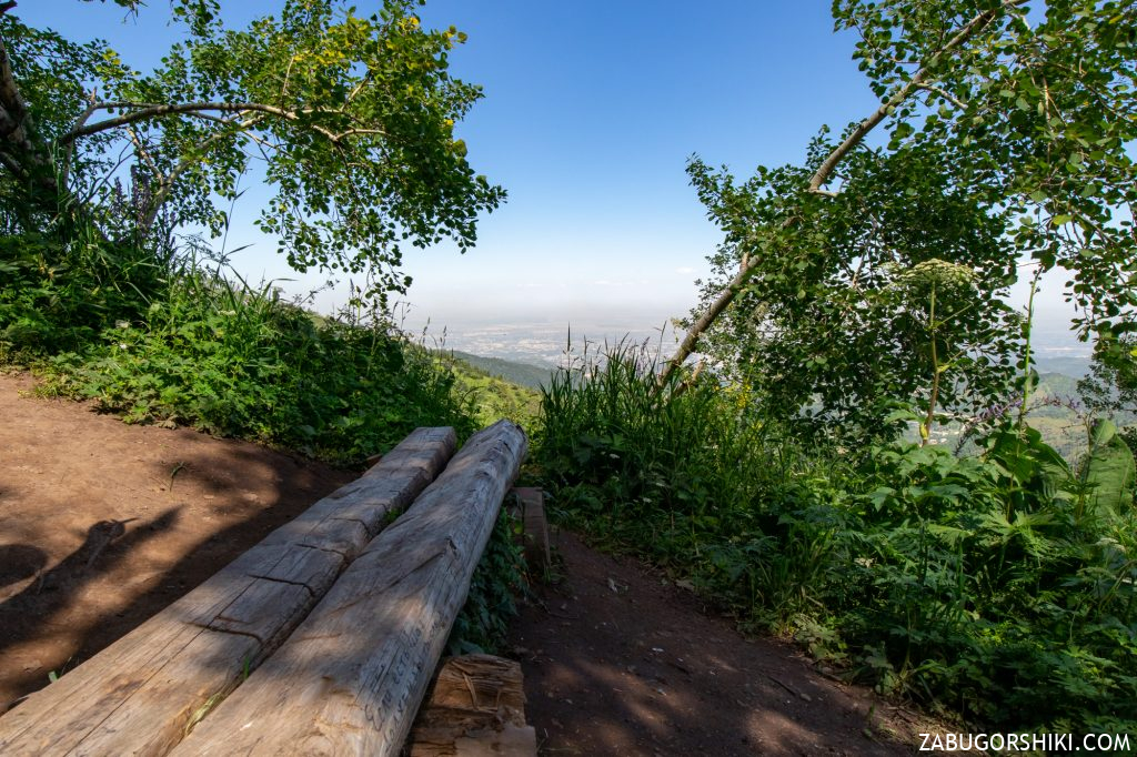 Деревянная скамейка на Кок-Жайляу