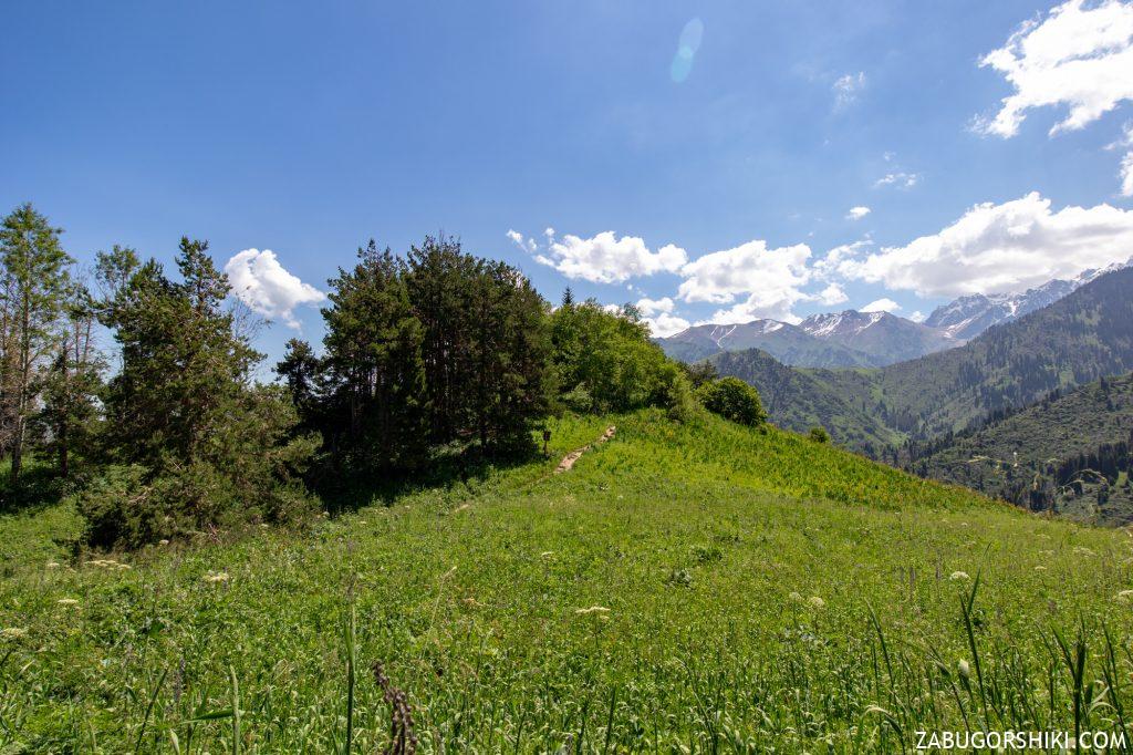 Горы Алматы, Иле-Алатайский национальный природный парк
