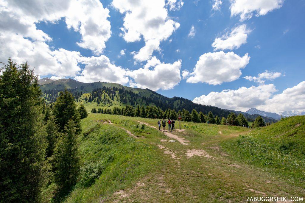 Кок-Жайляу фото плато, пастбище