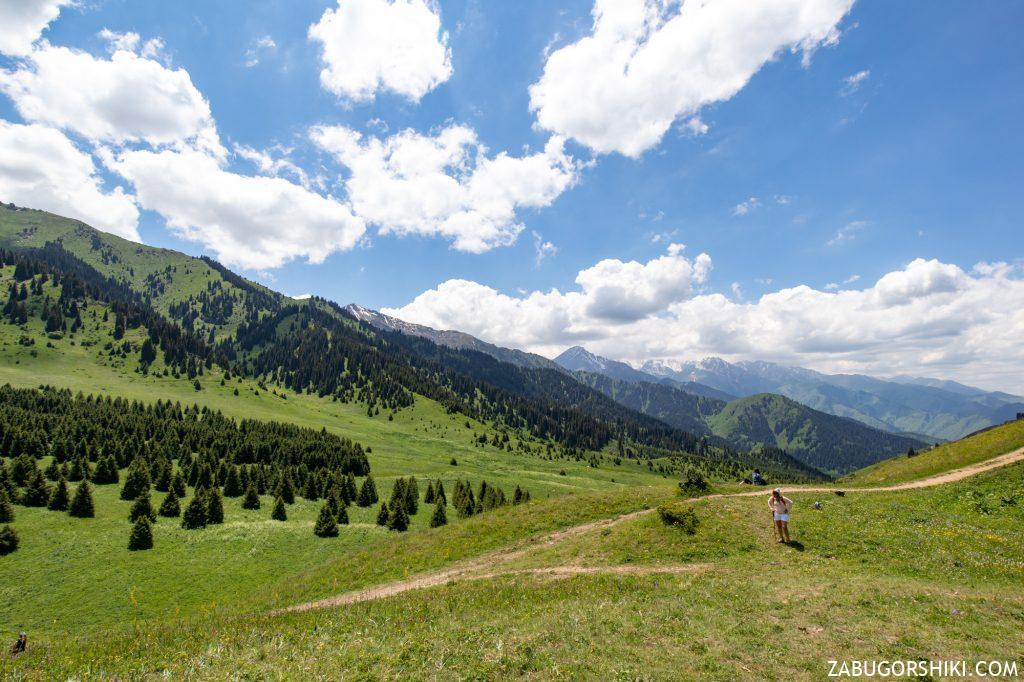 Кок-Жайляу вид на Большое Алматинское ущелье